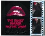 Stephen Calcutt THE ROCKY HORROR SHOW Genuine Signed Autograph 10 x 8 COA 5737